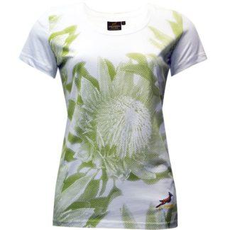 Springbok SS Crew Neck T-Shirt